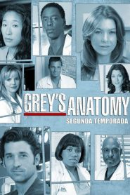 Grey's Anatomy: 2 Temporada