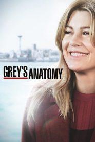 Grey's Anatomy: 15 Temporada