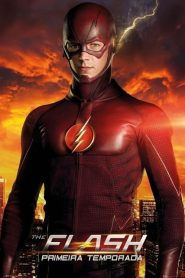 Flash: 1 Temporada