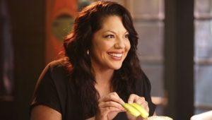 Grey's Anatomy: 11 Temporada x Episódio 5