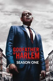 Godfather of Harlem: 1 Temporada